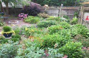 Elizabeth Place Chesapeake Virginia GardenBlog